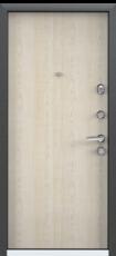 Дверь Torex Super Omega-10 Черный шелк RP3 Дуб бежевый